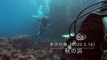 本日の海20200216.jpg
